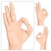 Hand gesture Sign Okey vector illustration