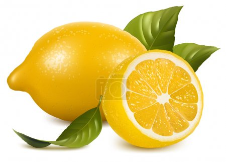 Illustration for Vector. Fresh lemons with leaves. - Royalty Free Image