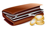 Wallet and coins