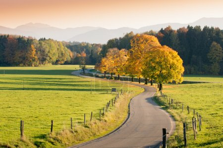 Photo for Winding Country Road through autumnal Landscape, vivid colored Maple Trees, Mountains in Background - Royalty Free Image