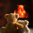 Two teddy bears sitting by the fire...