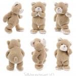 Set of positions of a stuffed teddy bear...