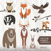 Vector image of forest animals Bear deer bird badger fox rabbit owl red squirrel wood pigeon