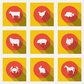 Fashionable flat icons with long shadows types of meat products. Nine animals on a bright background.