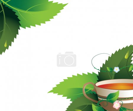 Illustration for Cup of herbal tea on a white background with place for text - Royalty Free Image