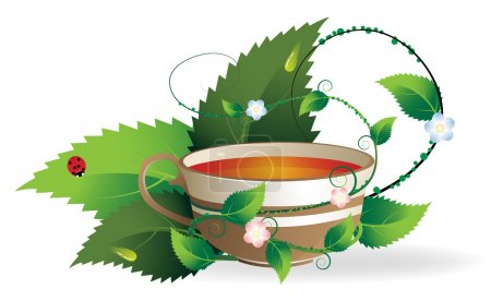 Vegetative shoots encircle the cup of herbal tea...