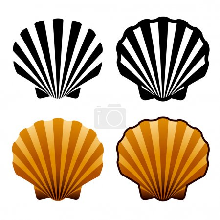 Illustration for Sea shells - illustration for the web - Royalty Free Image