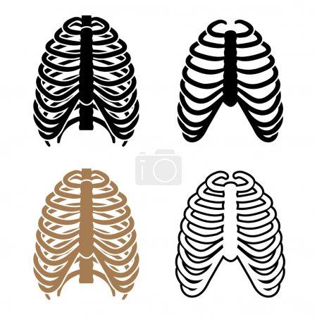 human rib cage symbols