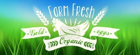 Illustration for Retro Fresh Eggs Poster - Royalty Free Image