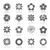 Vektorové sada kvetoucí květiny se stínem - symbol, ikona květin