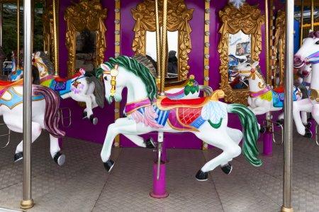 Carousel Horses on carnival