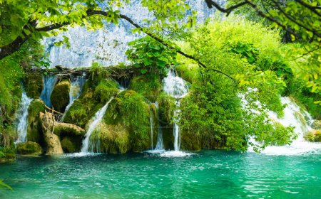 Photo for Landscape of Croatian nature - Royalty Free Image