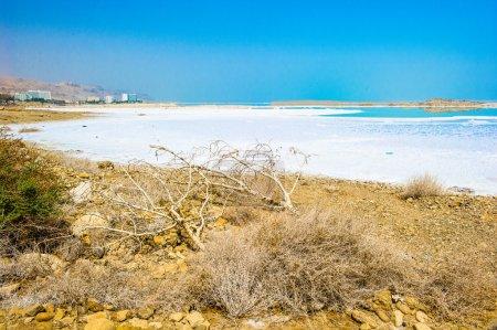 Coast of the Dead Sea, Israel