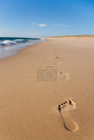 Photo pour Huellas al lado de la orilla, concepto de vacaciones - image libre de droit