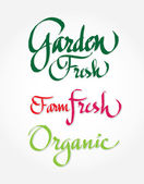Arden fresh farm fresh organic - original handwritten calligraphy for your logo website package or advertisement