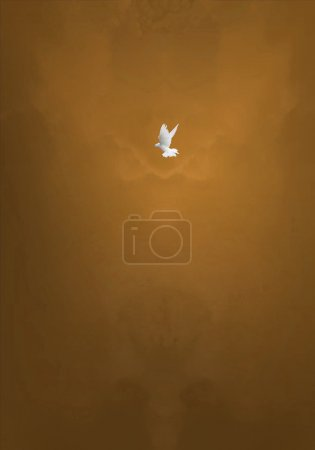 Photo for Holy Spirit Bird on Brown Glowing Clouds Background - Royalty Free Image