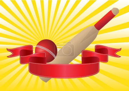 one cricket bat and ball
