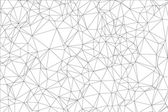 Background black and white polygon