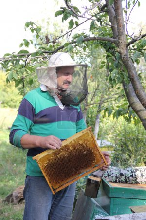 Work of the beekeeper