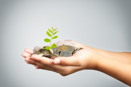 Hand of little girl with tree growing from pile of coins