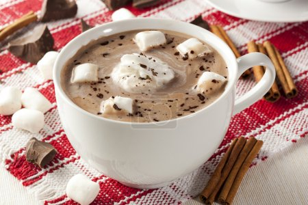 Photo for Gourmet Hot Chocolate with marshmallows and cinnamon - Royalty Free Image