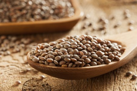 Photo for Dry Organic Brown Lentils against a background - Royalty Free Image