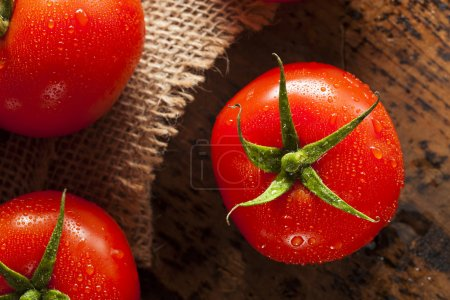 Photo for Organic Red Ripe Tomatoes on the Vine - Royalty Free Image