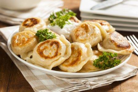 Homemade Polish Pierogis with Sour