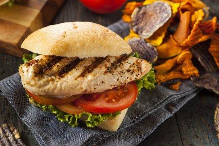 Photo pour Sandwich au poulet grillé sain avec chips de légumes - image libre de droit