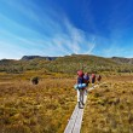 Hikers on Overland Trail in Tasmania, Australia...