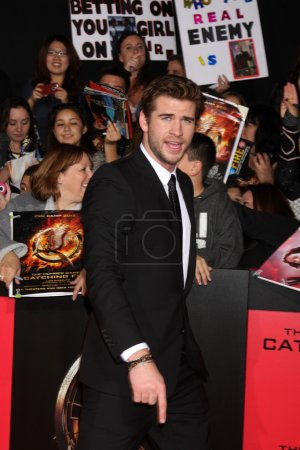 LOS ANGELES - NOV 18: Liam Hemsworth at the The Hu...