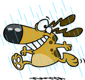 Illustration of a happy dog running in the rain during spring showers on a white background