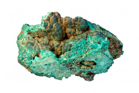 Photo for Sample of malachite (hydrated copper carbonate) with brown limonite (mixture of iron-bearing minerals). Width of sample 12 cm. - Royalty Free Image