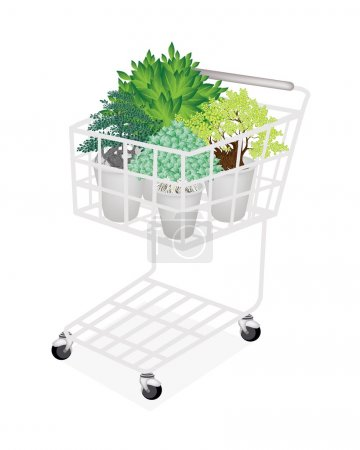 Illustration of Bonsai Tree in A Shopping Cart