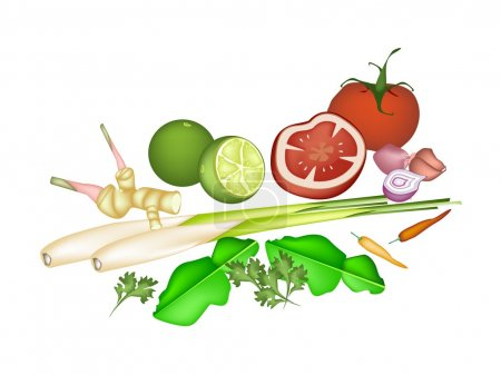 Vegetable and Herb, An Illustration of A Delicious...