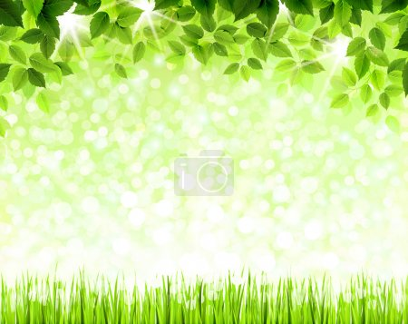 Illustration for Summer branch with fresh green leaves above the glade - Royalty Free Image