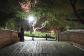 Central Park bridge at night