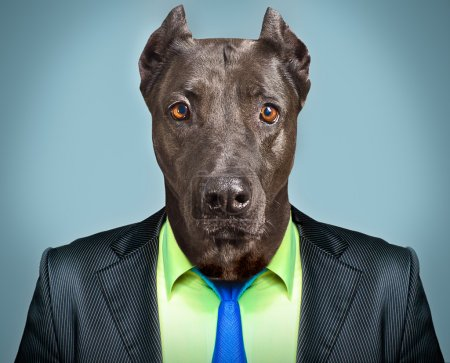 Portrait of a dog in a business suit