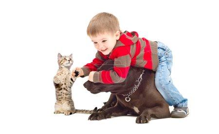 Foto de Funny game boy, un perro y un gatito - Imagen libre de derechos
