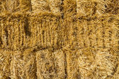 Haystack wall of dried straw