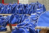 Blue sports bags