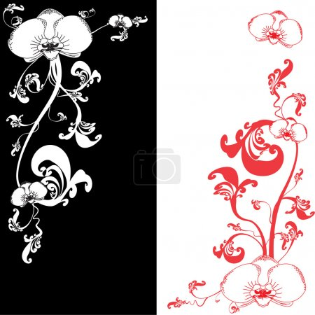 Illustration for Black and white curved background with orchid flower - Royalty Free Image