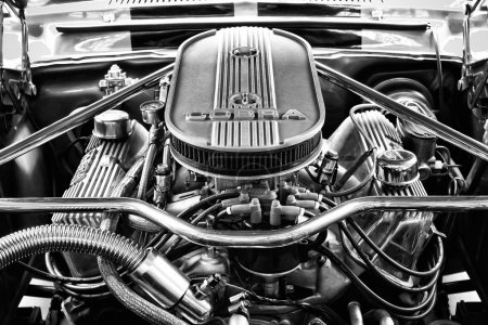 Engine Ford Shelby Mustang GT500 Eleanor (black and white)
