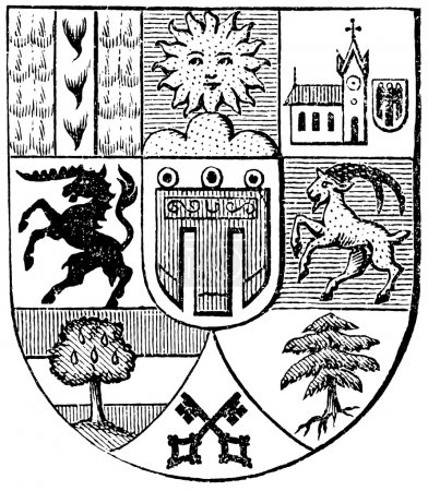 "Coat of arms of Vorarlberg, (Austro-Hungarian Monarchy). Publication of the book ""Meyers Konversations-Lexikon"", Volume 7, Leipzig, Germany, 1910"