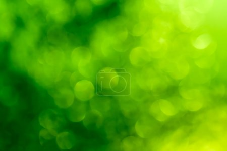 Photo for Abstract circular bokeh green background. - Royalty Free Image