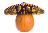 Goose Bump Pumpkin Wearing a Sombrero Isolated on White