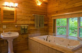 Bathroom with a View of the Forest