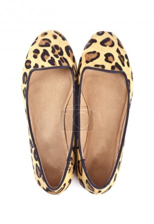 Women's Animal Print Flat Shoes