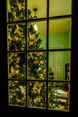 christmas tree in living room viewing thru a window