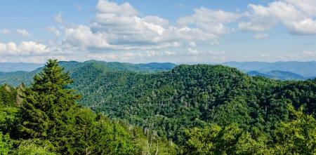 eine weite Sicht auf die rauchigen Berge vom Gipfel des clingma